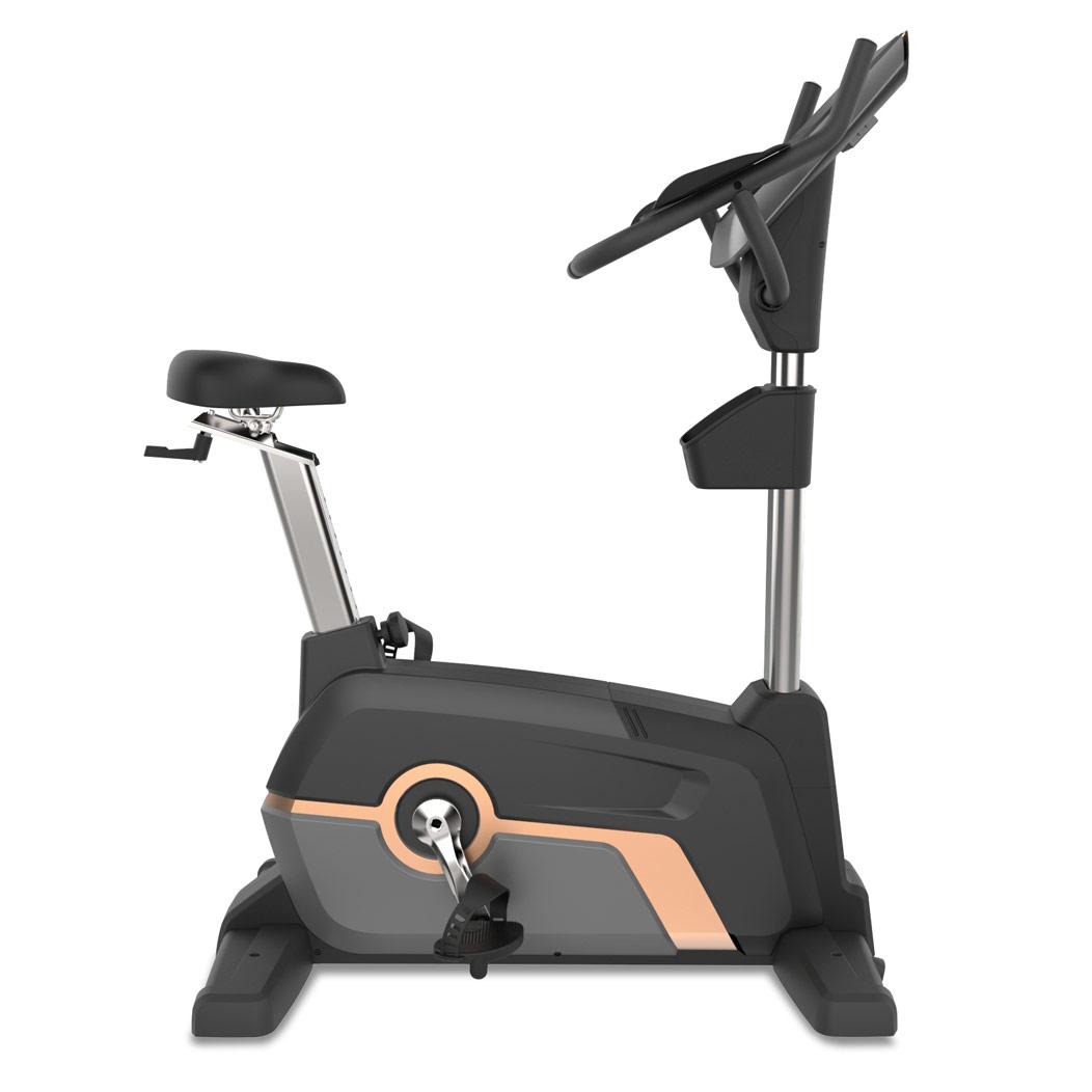 Upright Exercise Bike CM-710